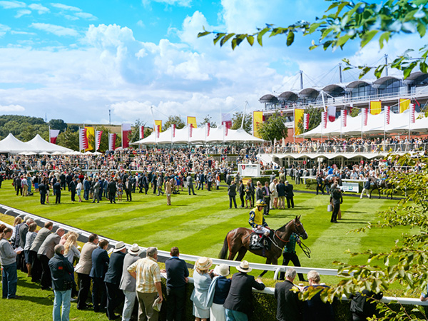 Glorious Goodwood Packages