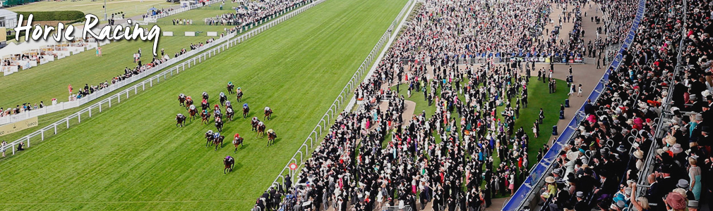 Horse Racing Hospitality Tickets