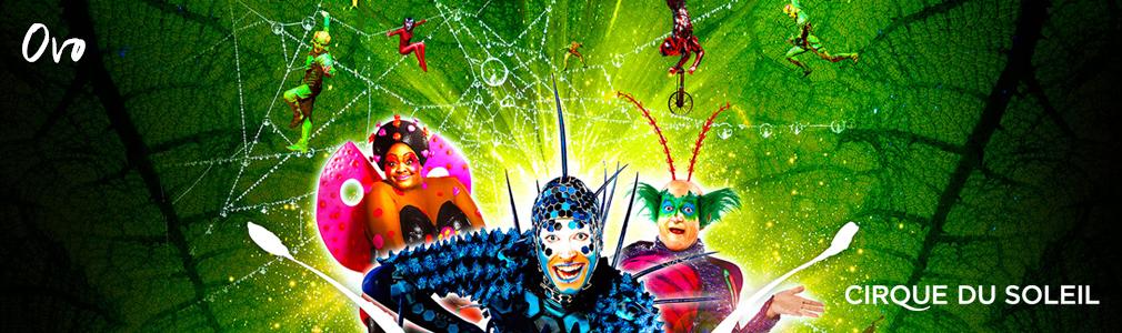 Cirque du Soleil hospitality